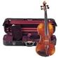 Russian collector pays .1 million for rare Nicolo Paganini violin