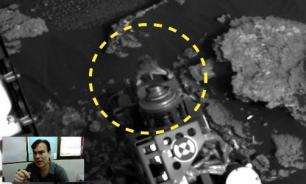 Curiosity rover finds live lizard on Mars? Video