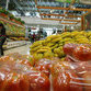 Hungry Russia builds new economic ties
