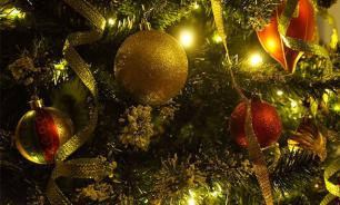 In St. Petersburg, company sells Christmas trees for bitcoins