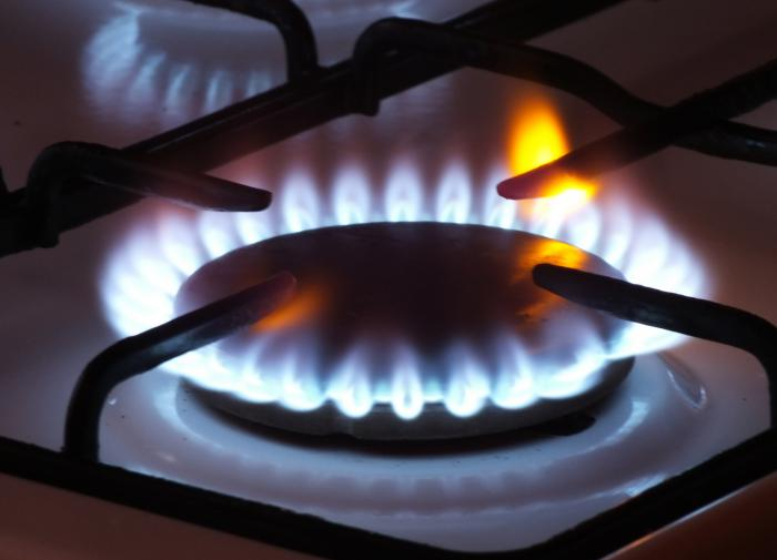 Russia and Hungary have agreed to supply gas for decades, ignoring Ukraine.