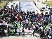 Kuban farmers rally to maintenance of anti-Russian sanctions
