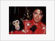 Michael Jackson's Bubbles Probably Became World's Richest Chimp
