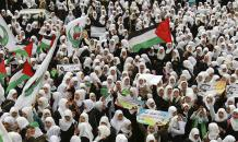 Palestine: Apartheid, Stolen Lives and Land, History Erased, United Nations Deaf Mute