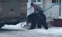 Fearless man hugs and then rides brown bear