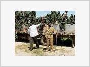 USA exercises its new military doctrine in Somalia
