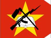 Mozambique says farewell to Kalashnikov gun
