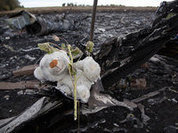 Was it a Buk missile or a Su-25 that shot down MH-17?