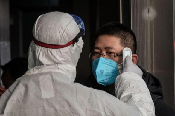 Who profits from coronavirus epidemic?