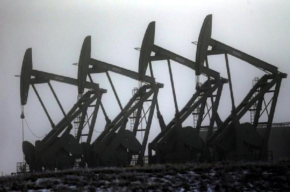 Putin stargazes, speaking about hysteria on European energy market