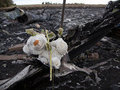 Secret witness claims Ukrainian Su-25 downed Malaysian Boeing MH17