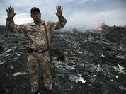 Ukrainian pilot shot down Malaysian Boeing MH17, secret witness says