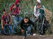 Refugees in Europe: Brown Battalions