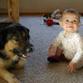 Dog raises boy until the age of 7