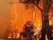 Australia burns in record temperatures