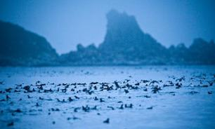 Kuril Islands: How can Russia make Japan see reality?