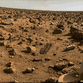Russia flies to Mars in 2014, USA's Martian mission slated for 2030