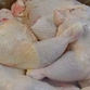 US poultry producers want to inundate Russia with Bush s legs again