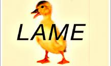 World media react to Russian Embassy  lame duck  meme