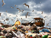 Garbage business in Russia excludes environmental concerns