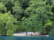 Cuba: UN document on environment to be presented