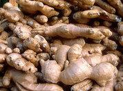 Ginger hundreds times more effective in destroying cancer cells
