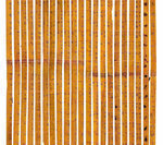 Ancient Chinese used bamboo sticks as calculator