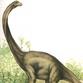 Huge dinosaur cemetery uncovered in Brazil