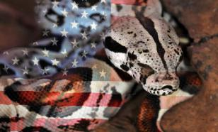 The United States: A Nation on Suicide Watch