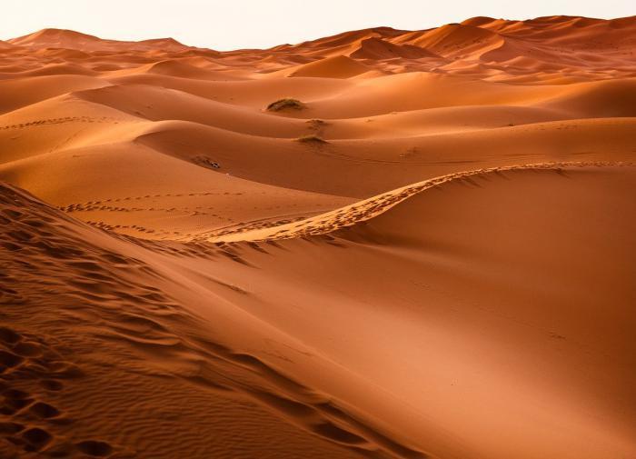 Western Sahara must be decolonized now