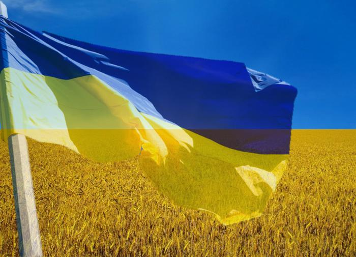 Ukraine sums up 30 years of its very sad and twisted independence