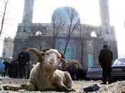 Muslims celebrate Kurban Bayrami with public animal slaughter