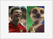 Why Arshavin's Team Mates Call Him The Meerkat?