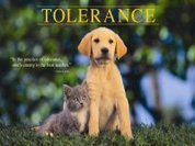 Tolerance is an act, not a day