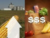 Food prices set to spike again