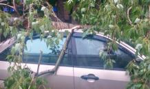 May storm in Moscow: 11 killed