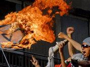 Palestine welcomes Gaddafi's fall
