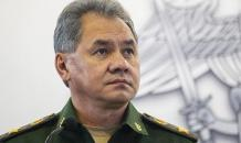British zoo has no animal that could tell Russian bear what to do - Russian DM Shoigu