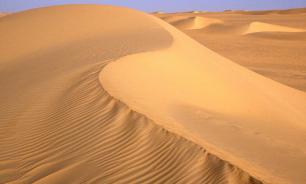 Migrants rescued from Sahara Desert