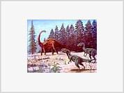 Dinosaurs originated from Antarctica?