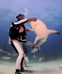 Taming deadly sharks
