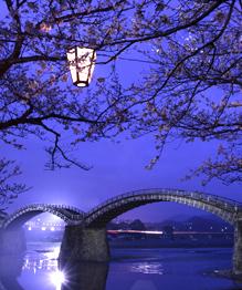 Most amazing bridges in the world
