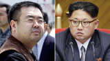 Kim Jong-un s half-brother was killed in Malaysia, Korean media outlets report. Reportedly, Kim Jong-nam was killed by a female spy