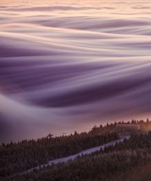 Foggy world