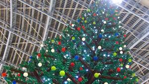 Tallest Lego Christmas tree