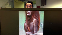 "Mike Whiteside and Ben Robinson make up a creative team at WCRS in London. When bored in the office, this playful duo decided to create a concept called ""Desk Safari,"" where they captured co-worker faces and aligned them with wild animal bodies. The results were pretty hilarious.