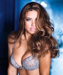 Victoria s Secret bra worth $2.5 million