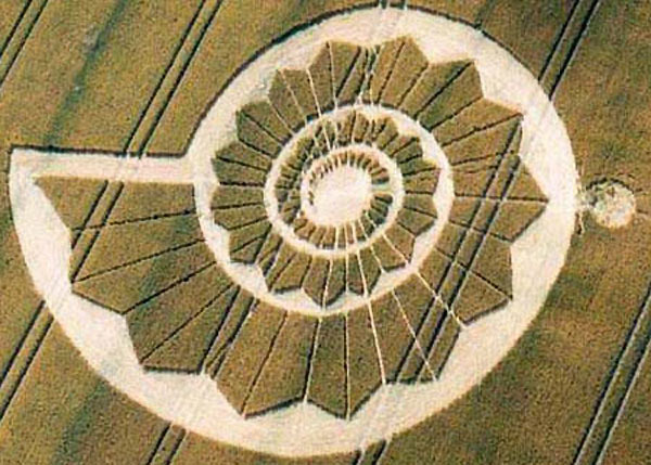 Remember the Crop Circles of 2010? Were they a warning ? 52313